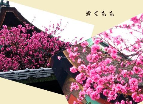 blog-0430.jpg