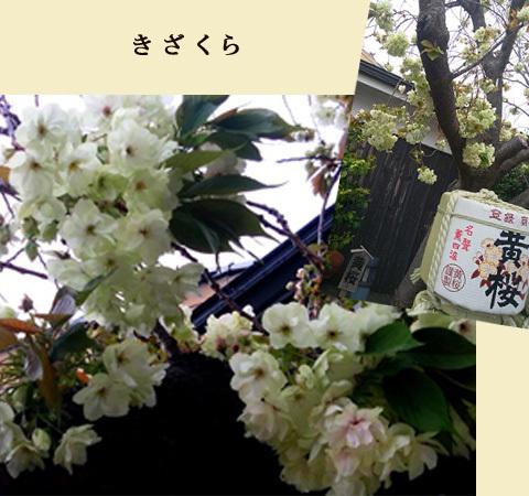 blog-0430c.jpg