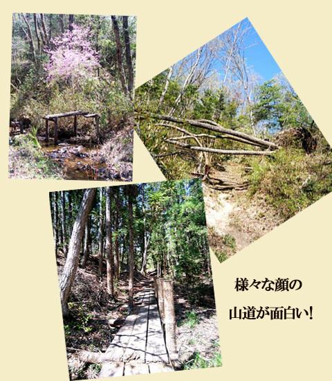 blog-19A20x.jpg