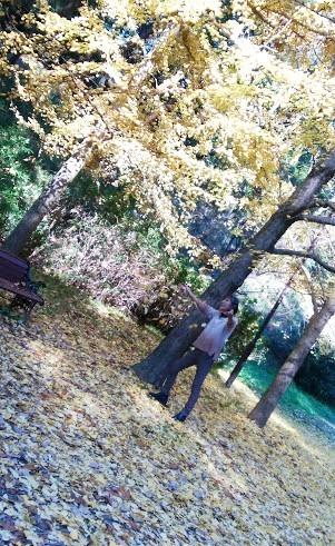 blog-19Decc.jpg