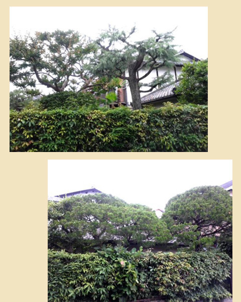blog-19Jn18cd.jpg