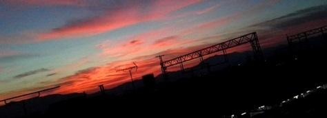byki-blog0805Bd.jpg