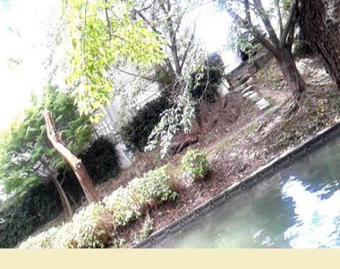 byki-blog0916C8.jpg