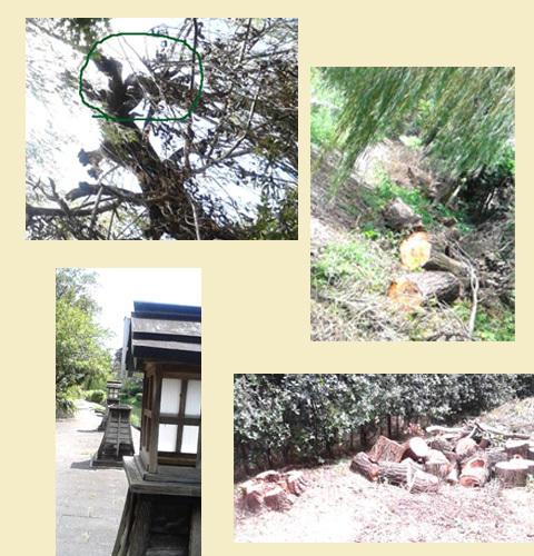 byki-blog0916C9.jpg